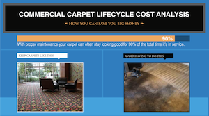 carpet lifecycle analysis